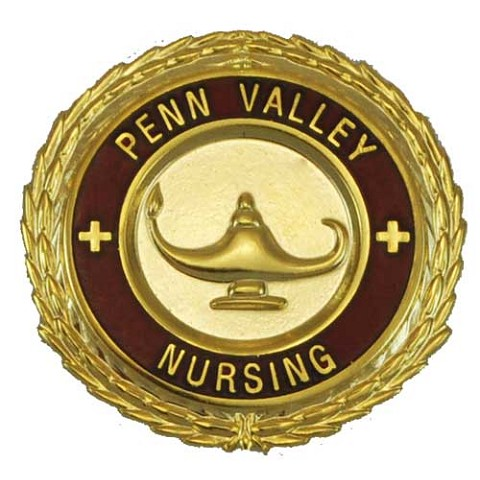 MCC - Penn Valley Professional Nursing Graduation Pin