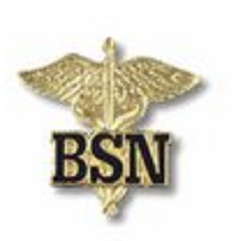 BSN - letters on Caduceus