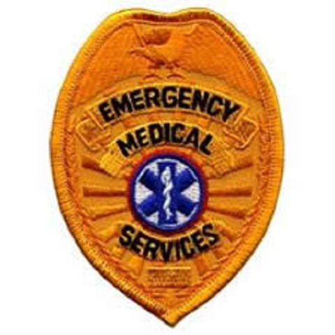 EMS Badge Patch Gold